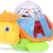 happy-turtle1