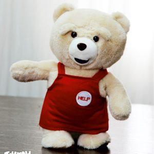 عروسک پولیشی تد