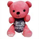 عروسک پولیشی خرسهای رنگی