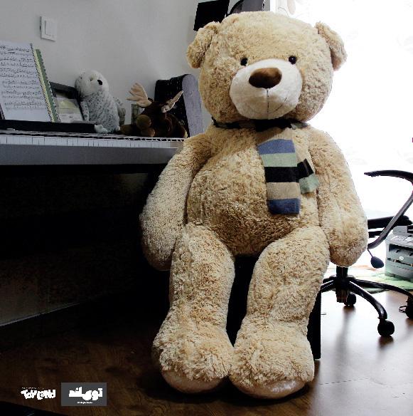 عروسک خرس بزرگ شکلاتی