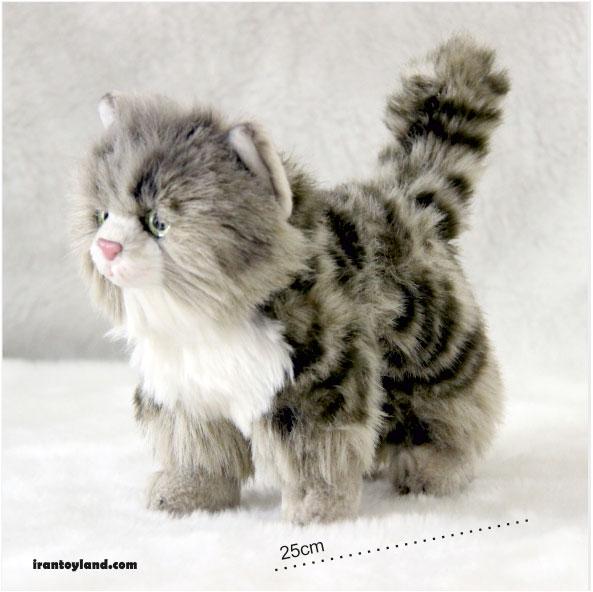 عروسک گربه پولیشی نژاد پالاس