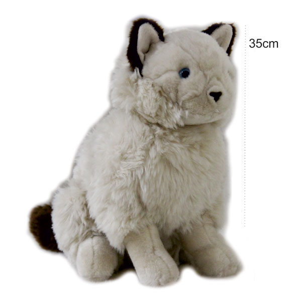 عروسک گربه تبتی سفید نشسته