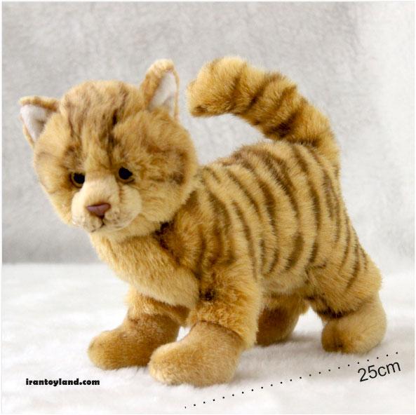 عروسک بچه گربه اروپایی
