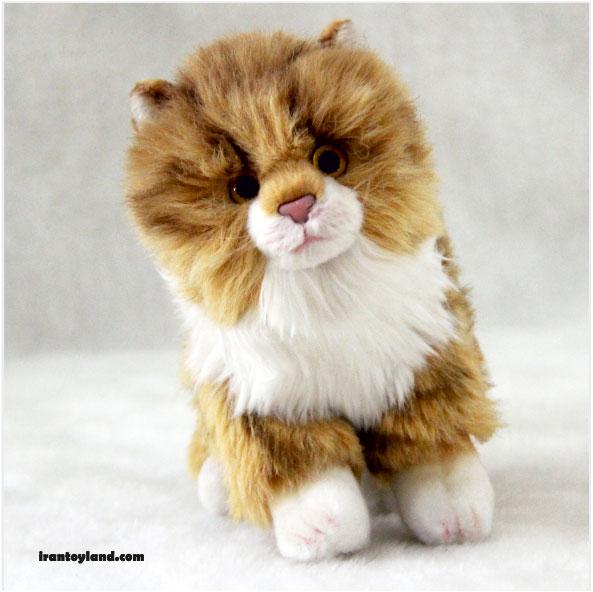 عروسک بچه گربه اسیایی مو بلند