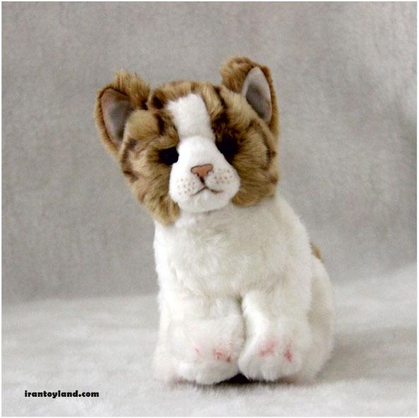 عروسک بچه گربه زرد نژاد امریکن موکوتاه