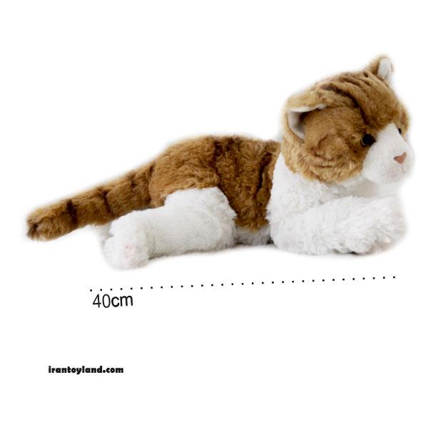 عروسک گربه آمریکایی موکوتاه