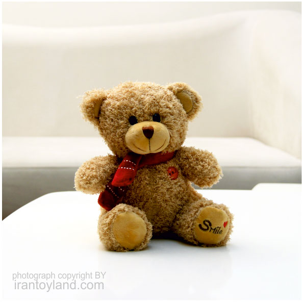 عروسک ولنتاین خرس تدی نشسته