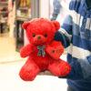 عروسک خرس قرمز قلب بدست