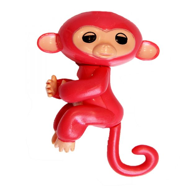 میمون انگشتی